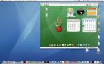 gOS 3.0 on Mac OS X host